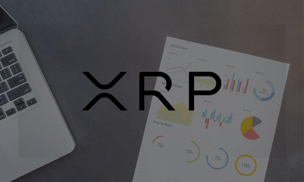 XRP bull run