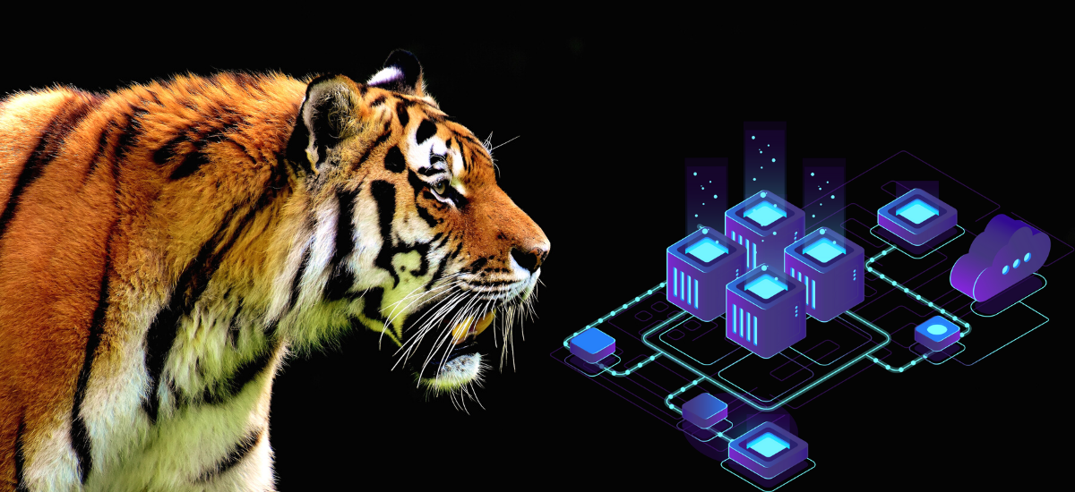 Relaunch of a Legendary Game 'The Way of the Tiger' on the Blockchain Platform