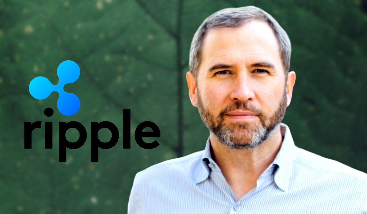 CEO of Ripple Speak Up On The Topic Of Dumping XRP