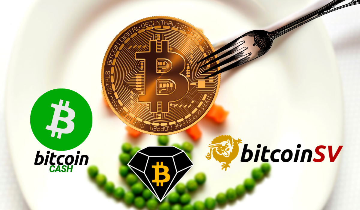 BTC forks Price Rally: Bitcoin SV Jumps 45%, Bitcoin Cash Up 14%, Bitcoin Gold Spiked 15%