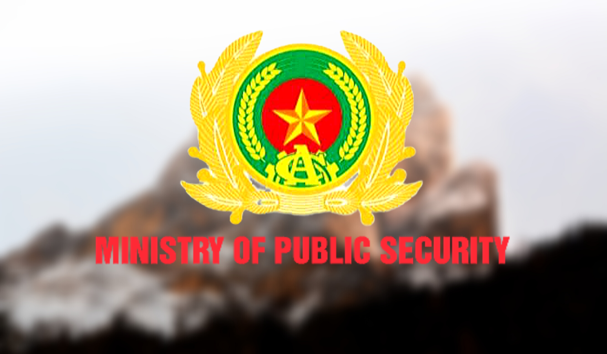 ministry of public security