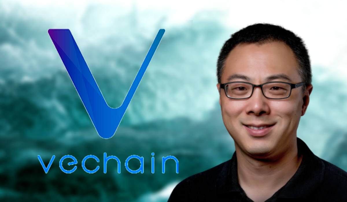 VeChain CEO, Sunny Lu Updated On VeChain 2020 Project Initiations