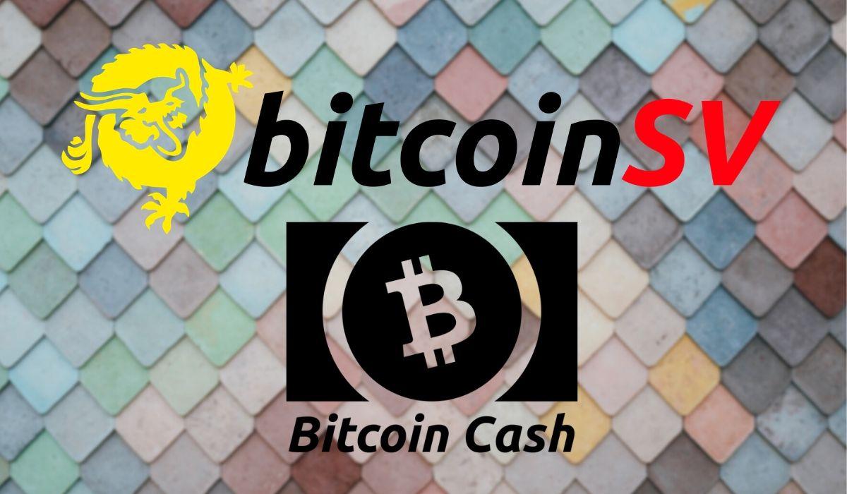 bitcoin sv bitcoin cash