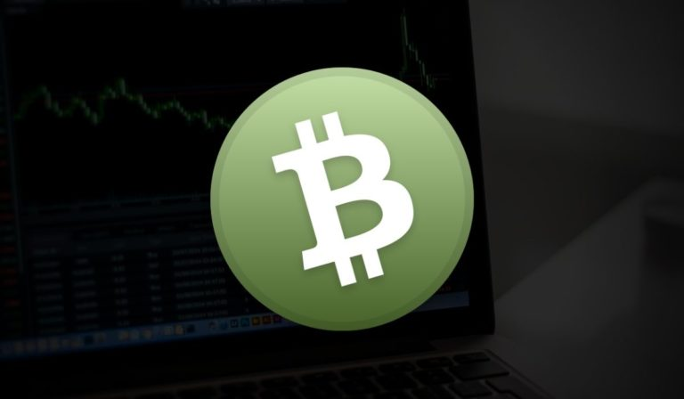 Bitcoin Cash (BCH) Prices Touched The Resistance Level Of $270 With Explosive Climb