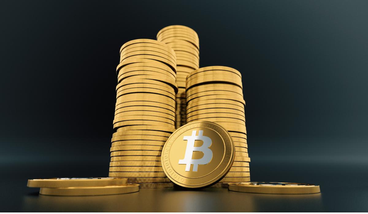 Pierre Rochard Bitcoin gold